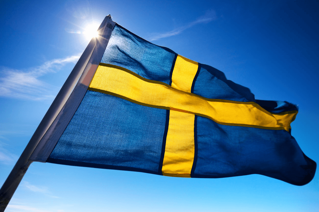 Sweden will introduce e-sports in the school curriculum