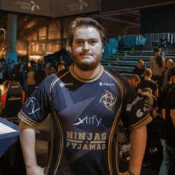 player cs go friberg