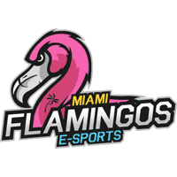 hold cs go Miami Flamingos