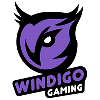 cs go team Windigo