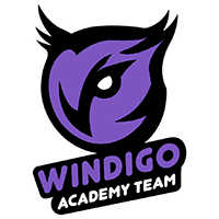 команда cs go Windigo Academy