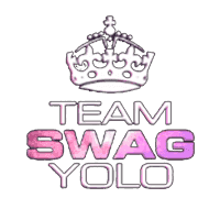 cs go team TEAMSWAGYOLO