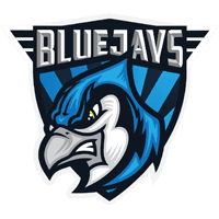 team cs go BLUEJAYS