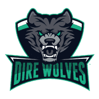 cs go team Dire Wolves