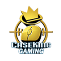 team cs go Caseking