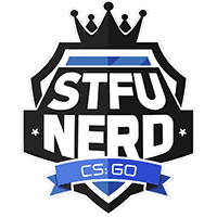 team cs go stfuNerd