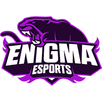 hold cs go ENIGMA