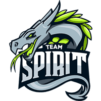 team cs go Spirit