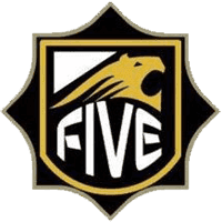 cs go team FIVE